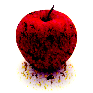 リンゴの画像 p1_26