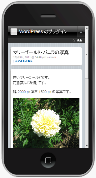 Apple iPhone 3GS で記事本文を確認