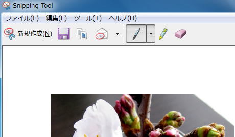 Snipping Tool の編集画面